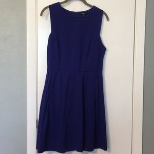 Gorgeous cobalt blue Madewell dress
